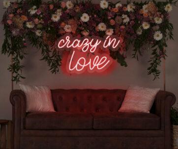 Alquiler -Crazy in Love